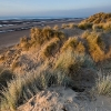 Sefton sand dunes